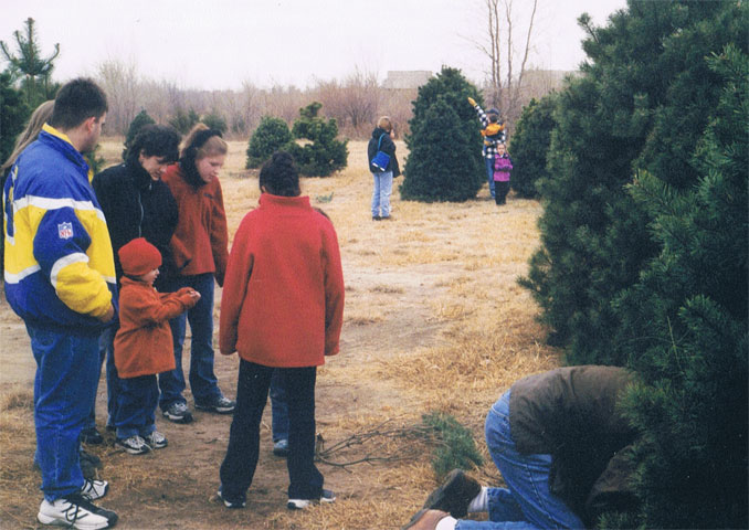 Sean cutting down the Christmas Tree at Prairie Pines