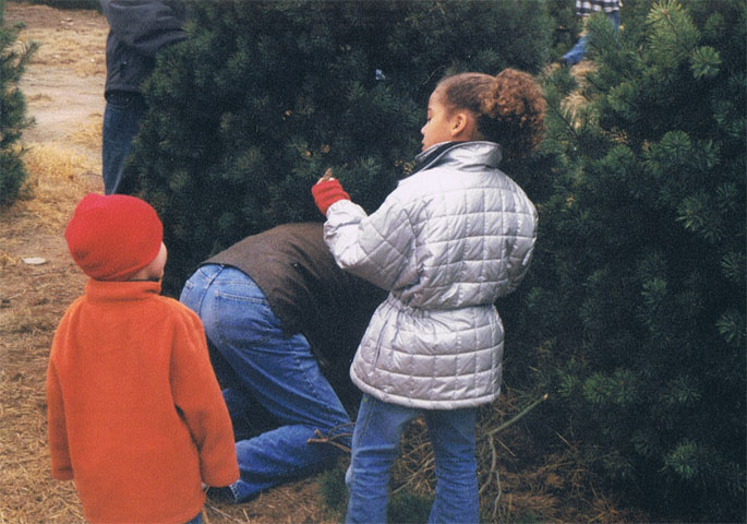 Haley and Hayden watching Dad cut down our Christmas Tree